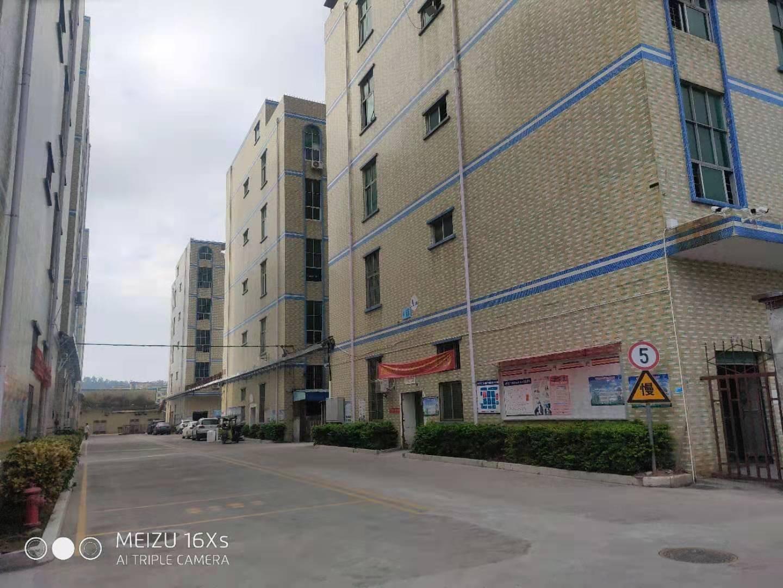 坪山坑梓新出5米一楼1300平厂房出租可分租能过环评