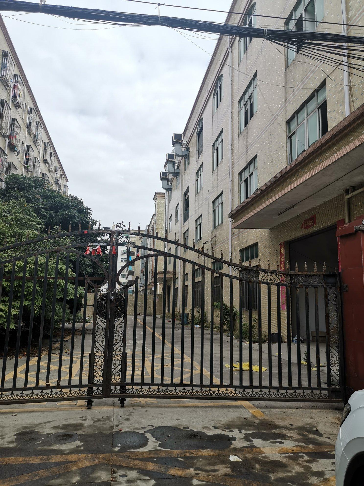 福永107国道附近独门独院4000平方实际面积出租
