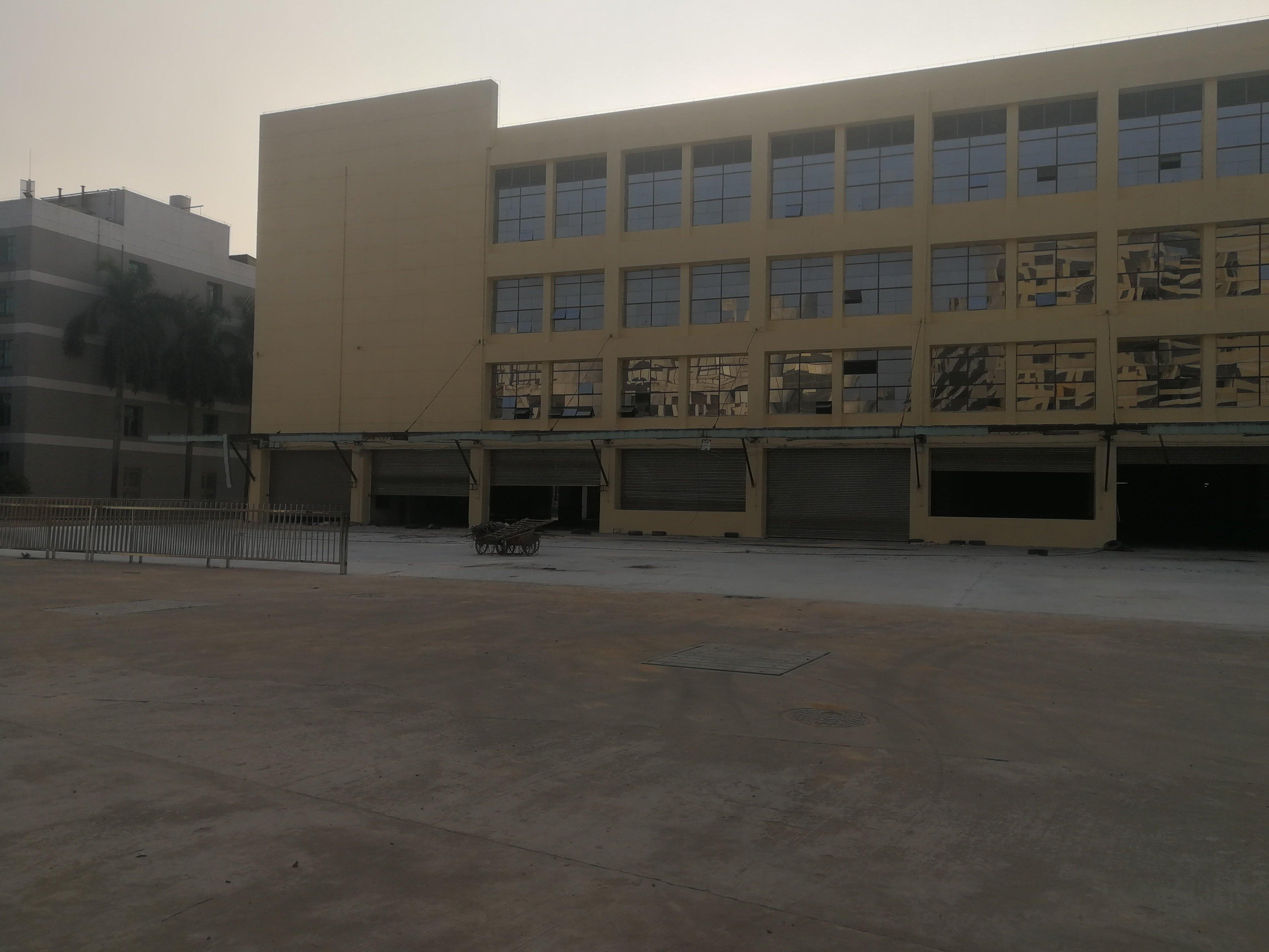 虎门红本厂房每层16000平,仅租16无 6-图2