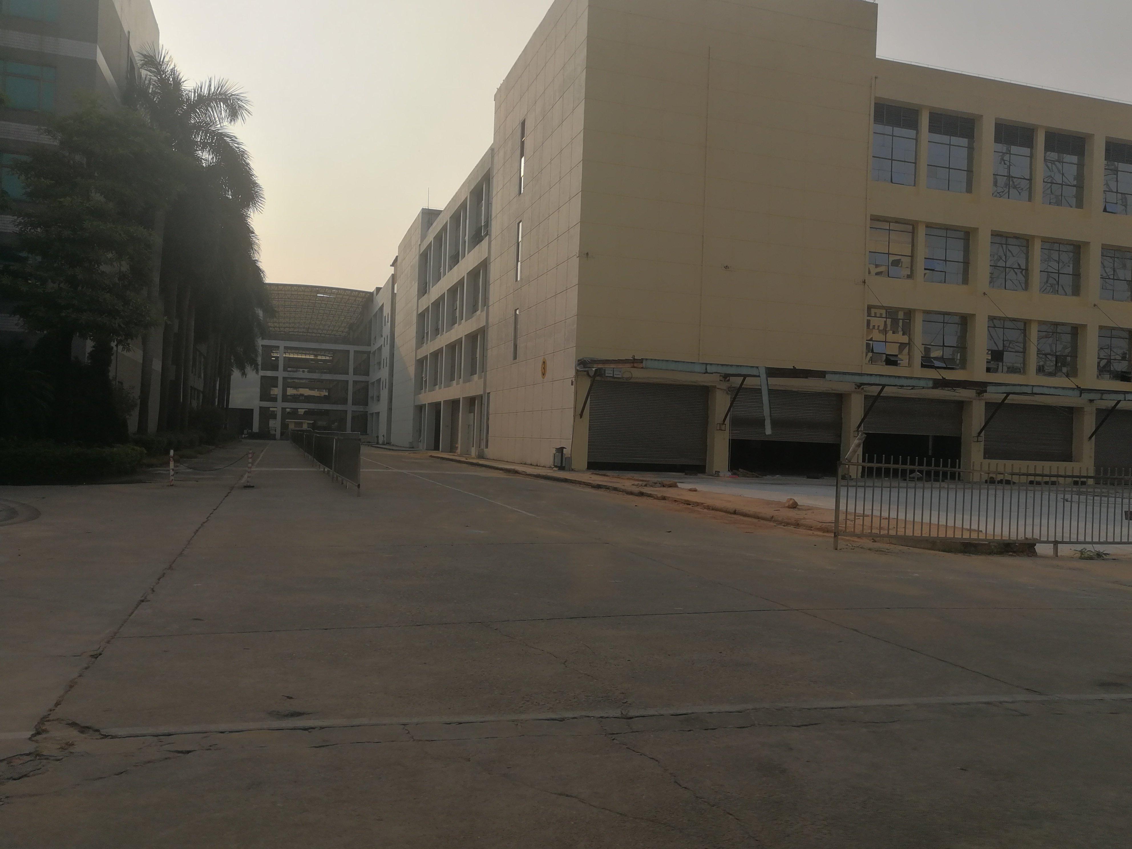 虎门红本厂房每层16000平,仅租16无 6-图4