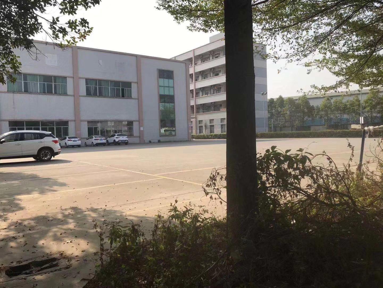 松山湖精品独院标准厂房招租