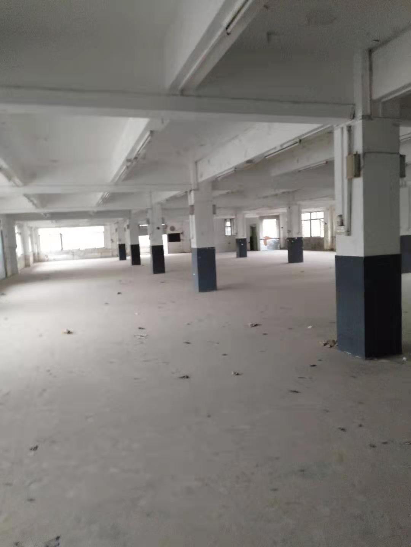 黄埔文冲标准厂房100平方起分租,可做仓库