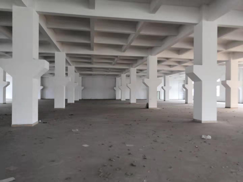 龙华独院26000平层高8米大型工业厂房招租-图3