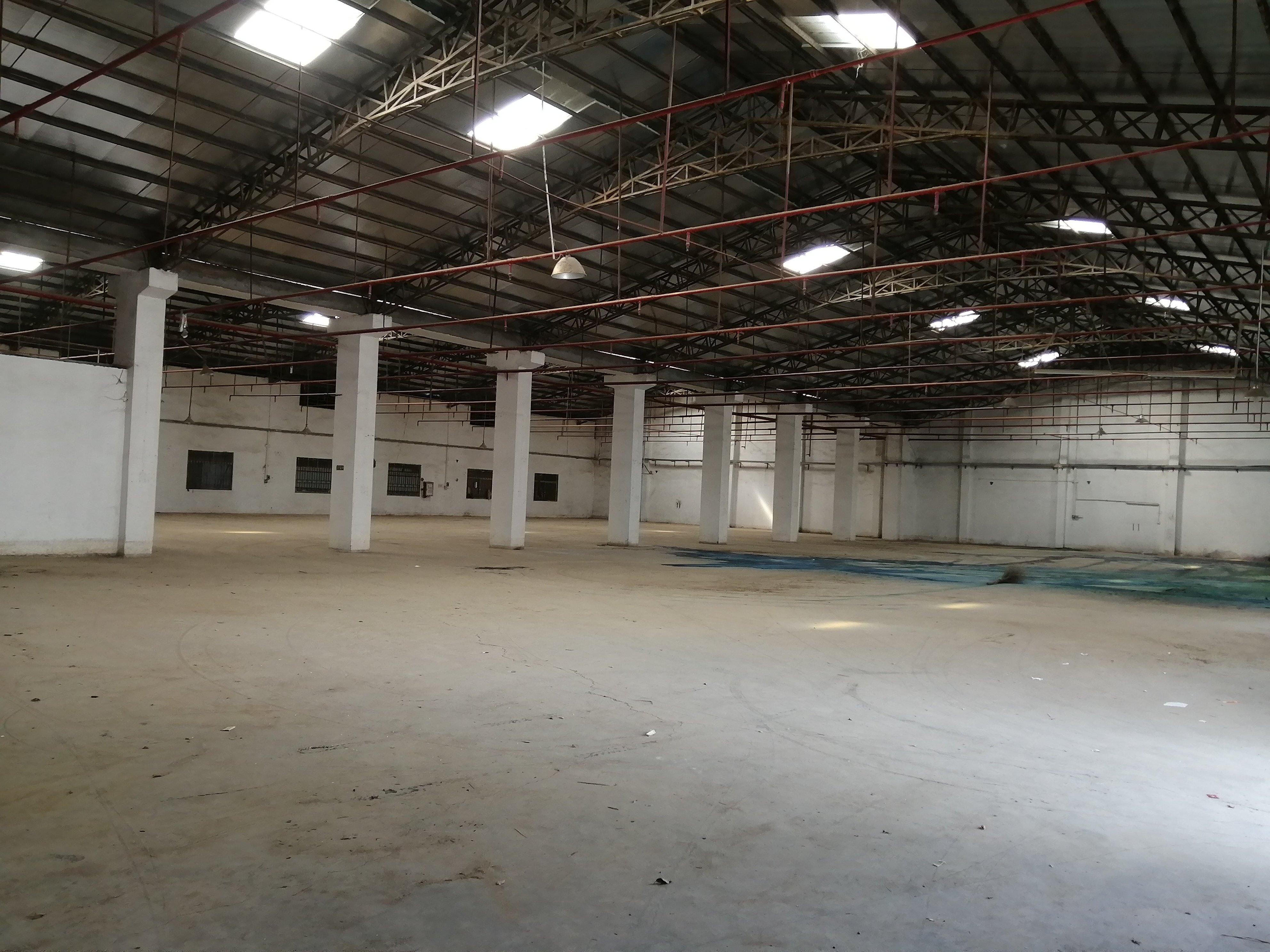 大型单一层特种厂房出租