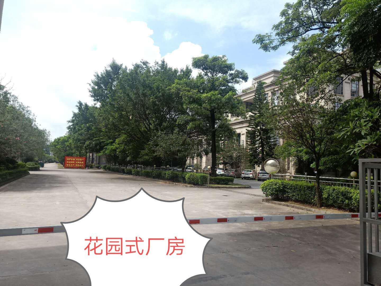 大岭山镇大形钢构仓库厂房出租占地面积46亩大小可分租