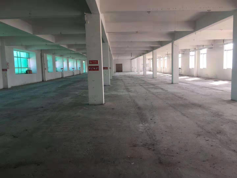 佛山市禅城区张槎1800平米标准厂出租,可以分租,能办环评