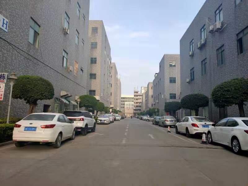 公明楼村大型园区新出2400平方6米高一楼出租