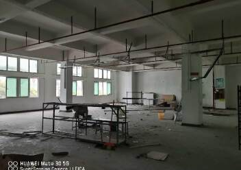 观澜章阁工业区标准厂房600平带办公室带消防喷淋图片6