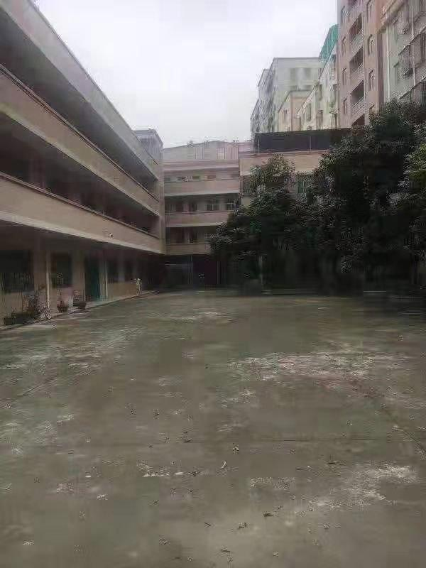 深圳红本小厂房占地2000平米售价5200平米售价3800万