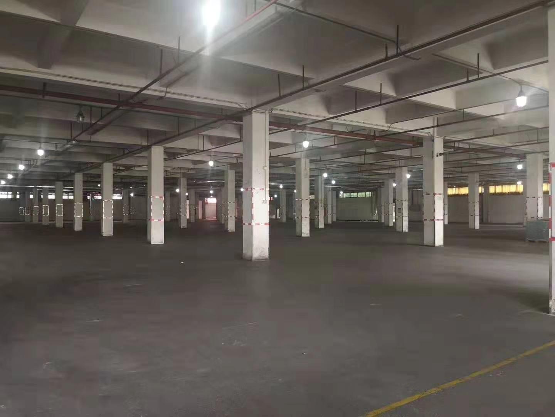 洪梅镇独院标准厂房8000平适合仓库空地大交通方便