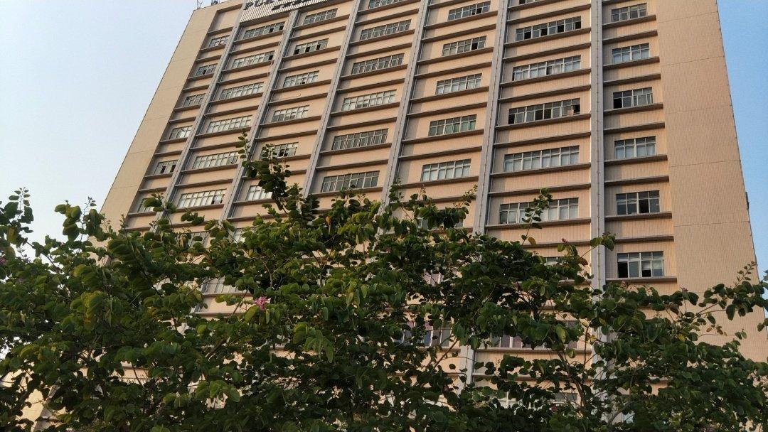 松岗燕川新出九层独院36400,每层5200平,带红本