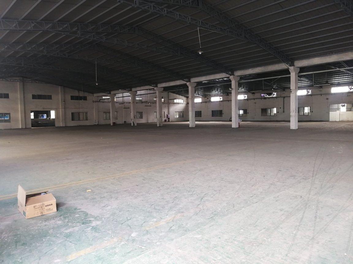 万江有个厂房4300宿舍1000方,办公室500的