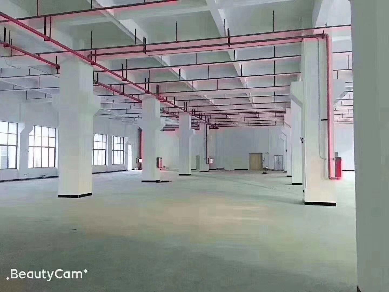 50年独立红本房产证,全新高端工业园区楼上560平厂房出售