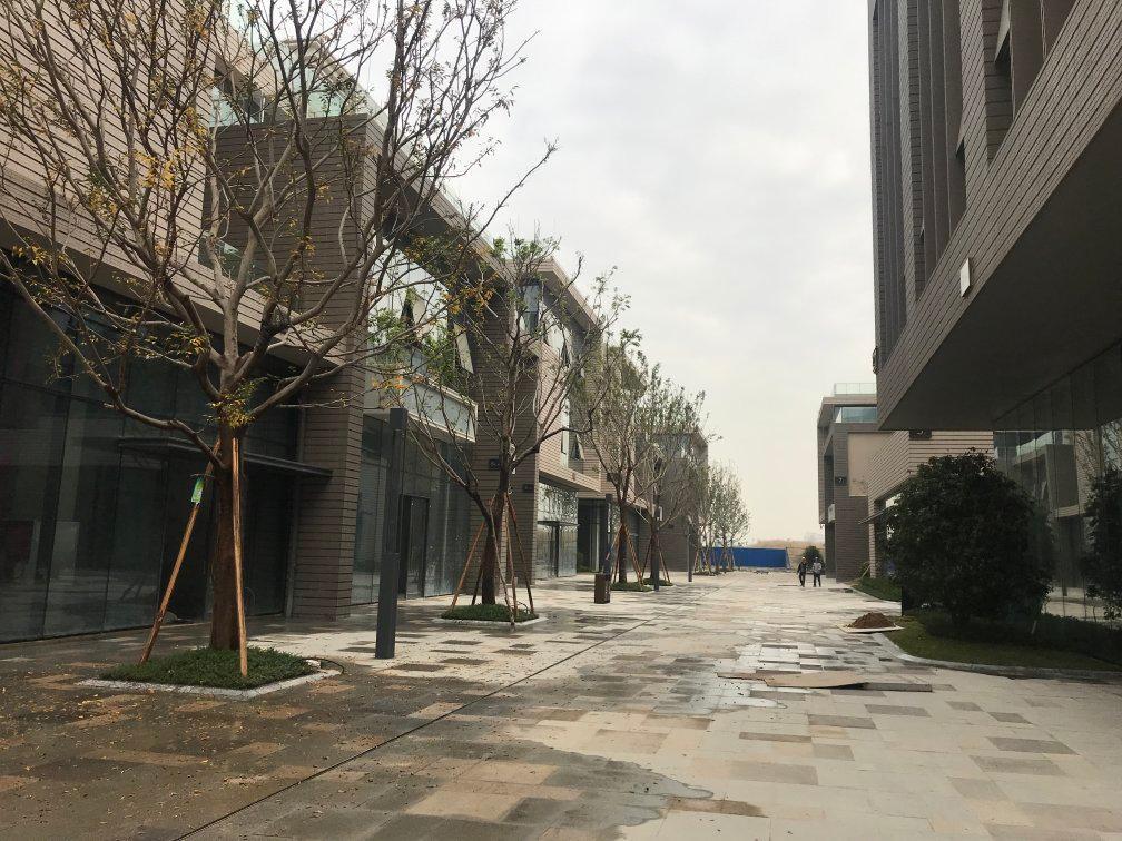 厚街镇花园式三层独栋研发厂房出售