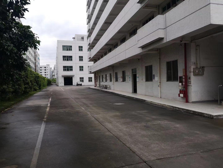 荷坳独院红本厂房建面7800平米出售