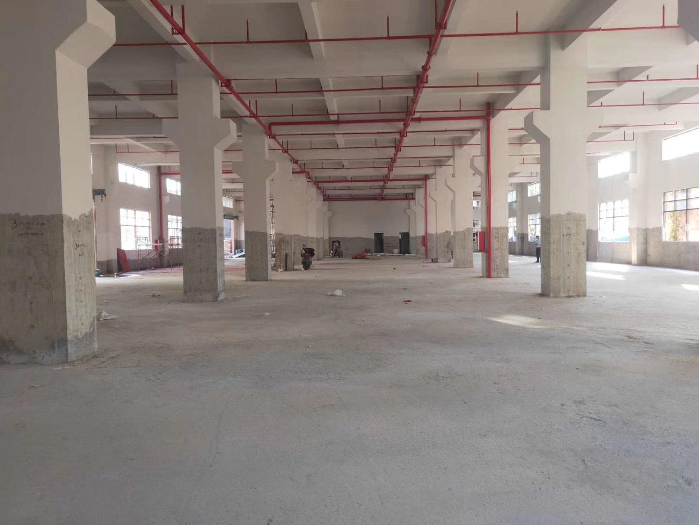 国有不动产权标准厂房6200平方出售