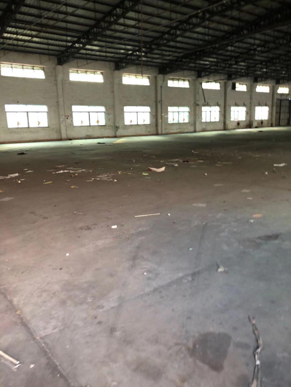 望牛墩镇带卸货平台仓库