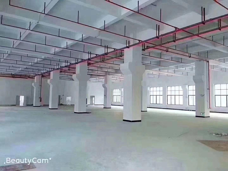 新建大型园区重工业标准厂房200000平一楼7.5米带牛腿