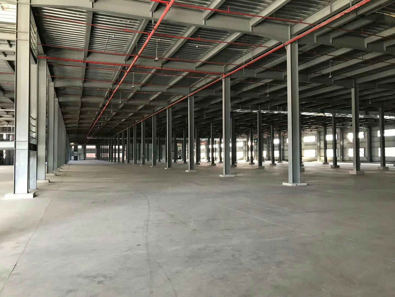 塘厦单一层仓库1.2万平方招租空地大可分租