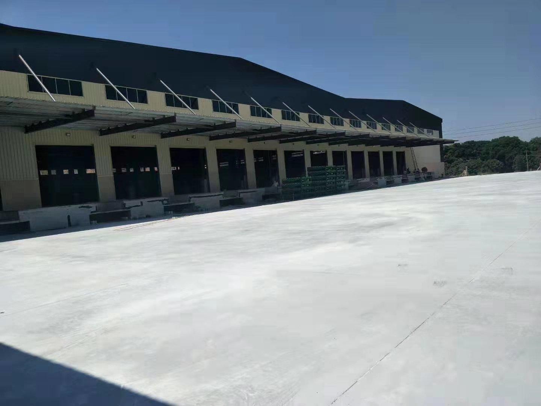 塘厦周边高速出口附近标准电商物流仓库3.7万平方招租