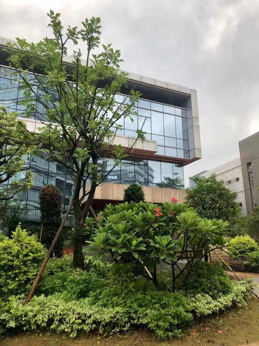 三水区出售带豪华装修办公楼三十万平方,300平方起分售