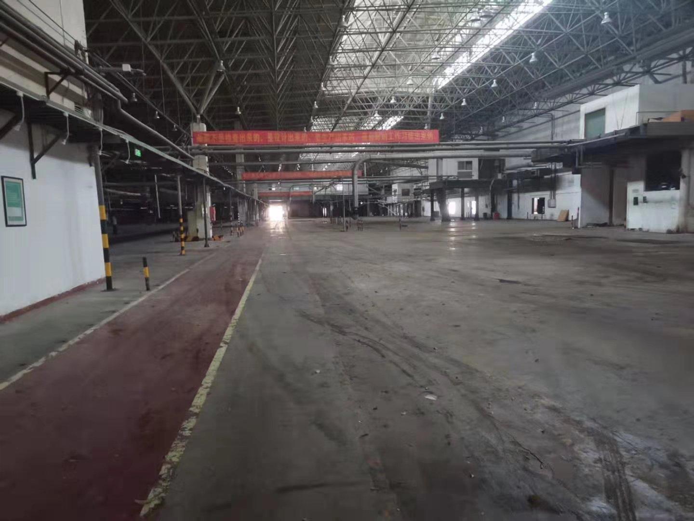 布吉坂田40000平高12米钢结构物流仓库招租可以分租