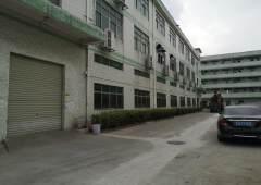 公明主干道边豪华装修厂房整层面积1300平方米出租
