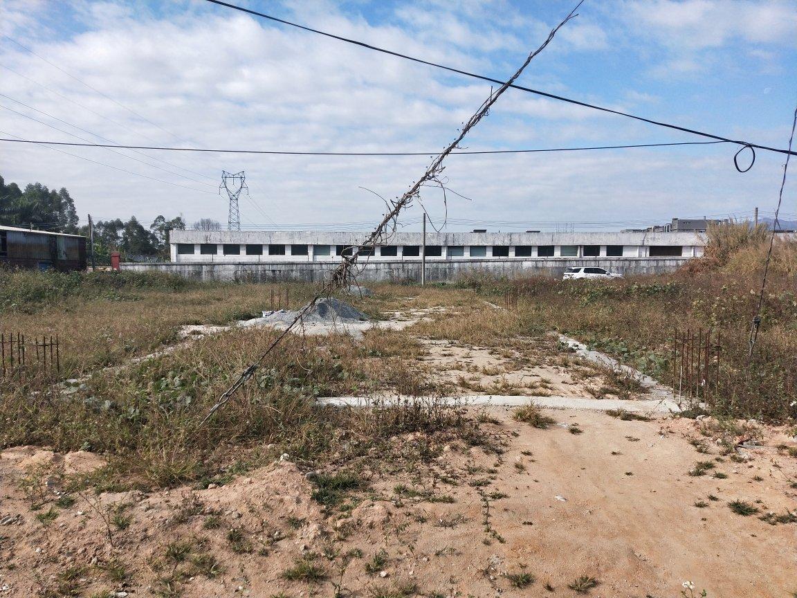 福田镇国有证工业土地22500m²