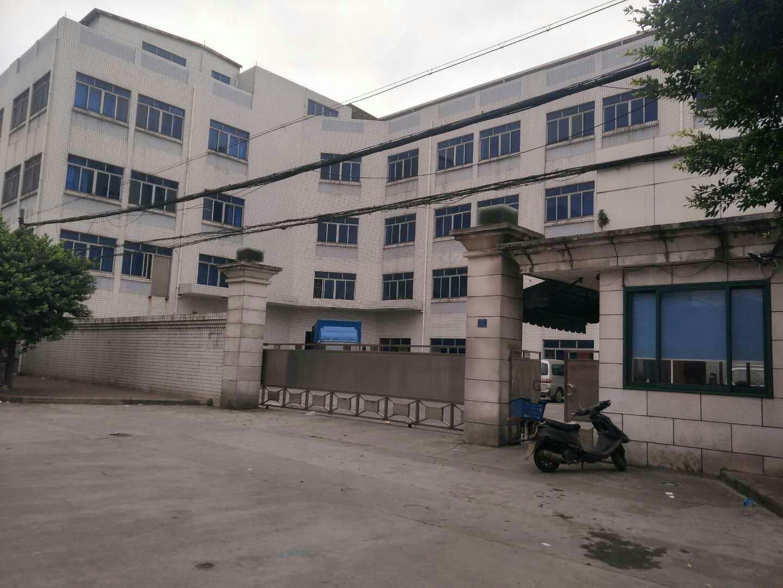 虎门镇非常合适做口罩,消毒水行业厂房,面积1493平米-图3