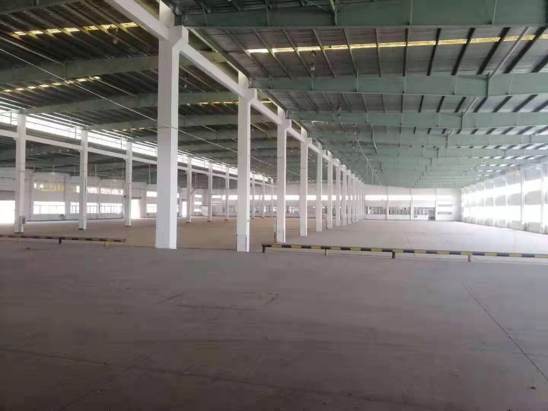 全新90000平方单一层物流仓储出租层高13米