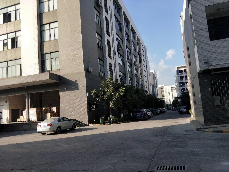 公明高新园区原房东实际面积1-3层6785平方,电梯两台5顿