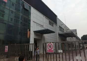 福永原房东6000平米实际面积单一层厂房仓库出租。图片2