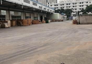 福永原房东6000平米实际面积单一层厂房仓库出租。图片4