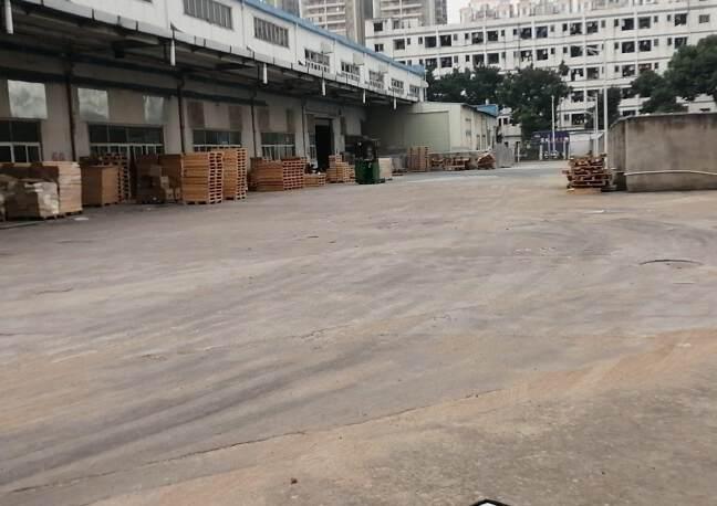 福永原房东6000平米实际面积单一层厂房仓库出租。