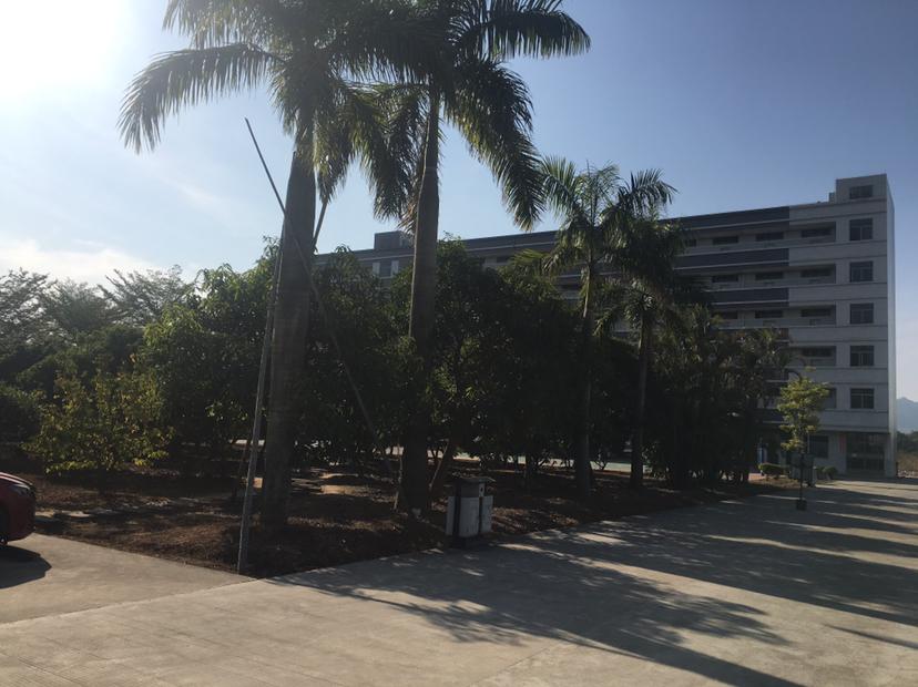 惠州市博罗国有证工业单一层厂房10358平方