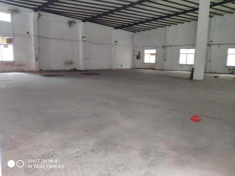 横沥镇村委会单一层厂房招租