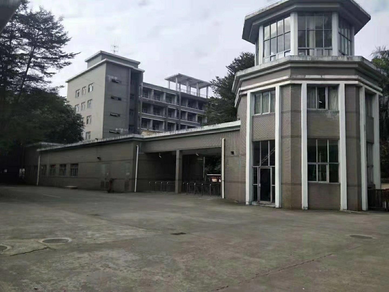 沙田镇大泥村原房东厂房面积12600平方,租金19元