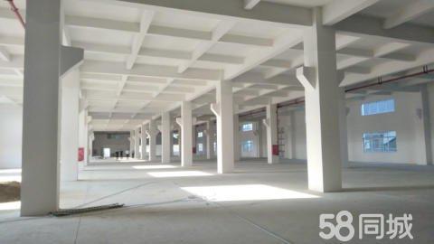 出售容桂天富来全新国有厂房园区配套环评秒过标准现代化工业厂房