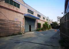 公明松白路边独院钢构厂房1600平米出租