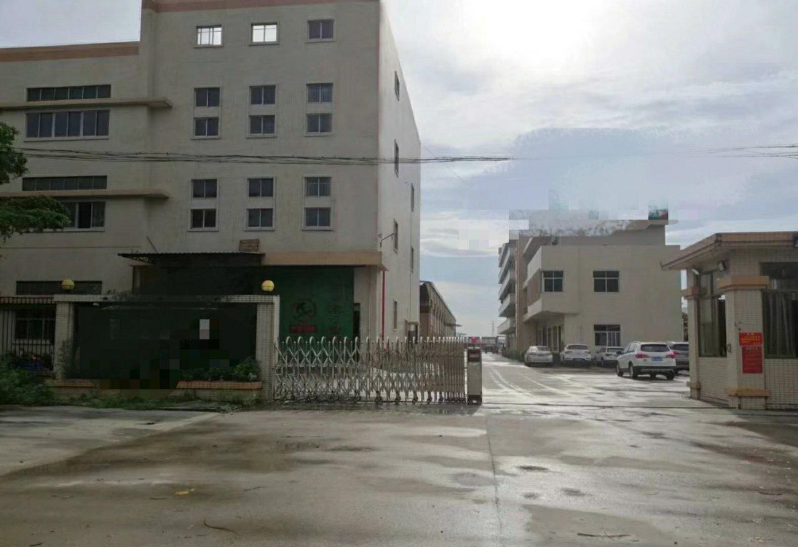 沙田镇西太隆就兴小组新出标准厂房面积2300平方,租金16元
