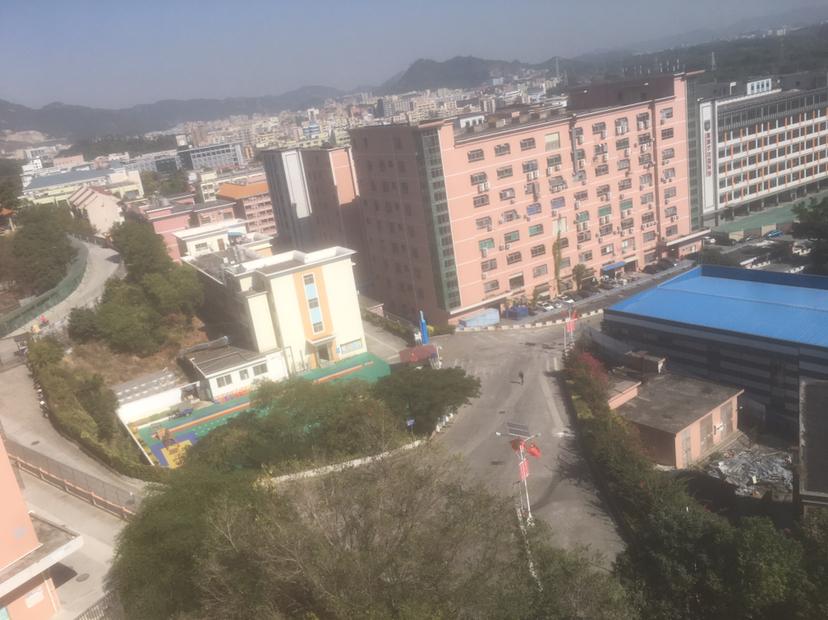 西乡鹤洲大型工业区红本厂房出租,园区空地超大。