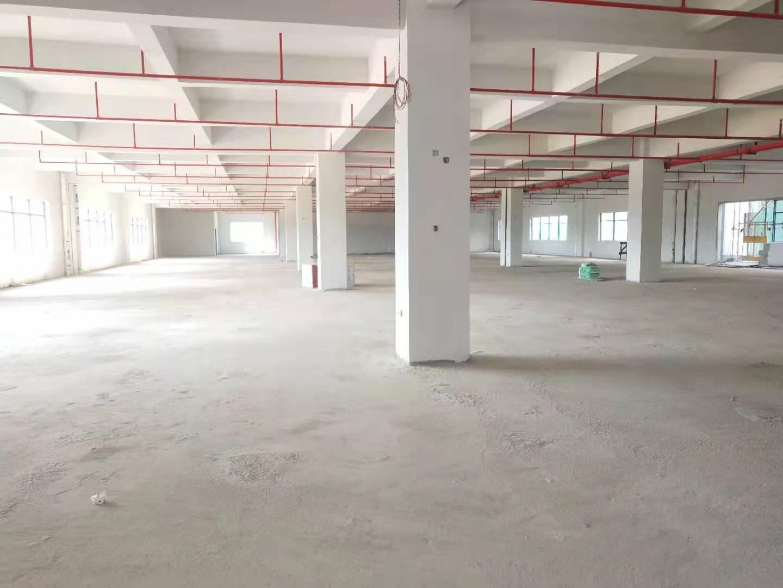 惠阳镇隆204县道边全新标准厂房一楼2000平有现成牛角位