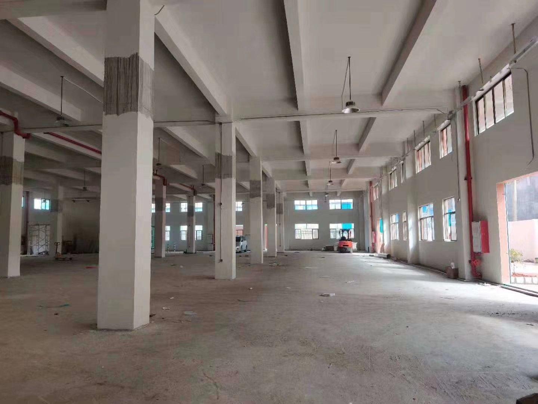 高明区明城独院厂房 厂房面积:6500平 宿舍办公1500㎡-图2