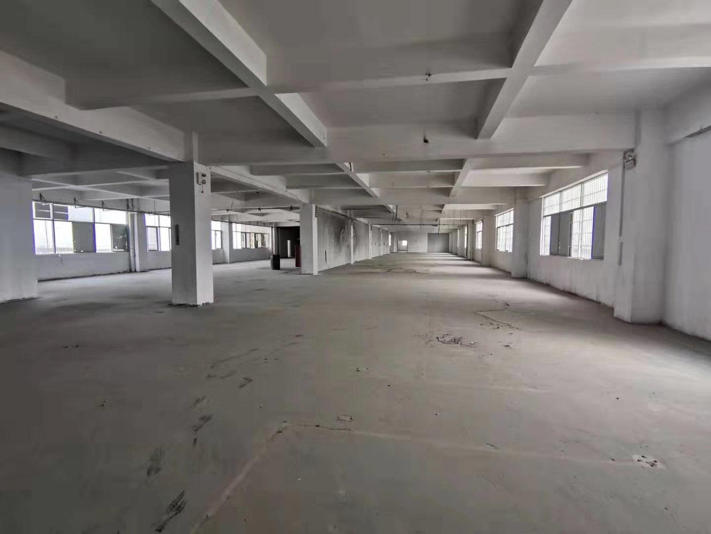 中山市黄圃镇大雁工业园楼上2000平带装修
