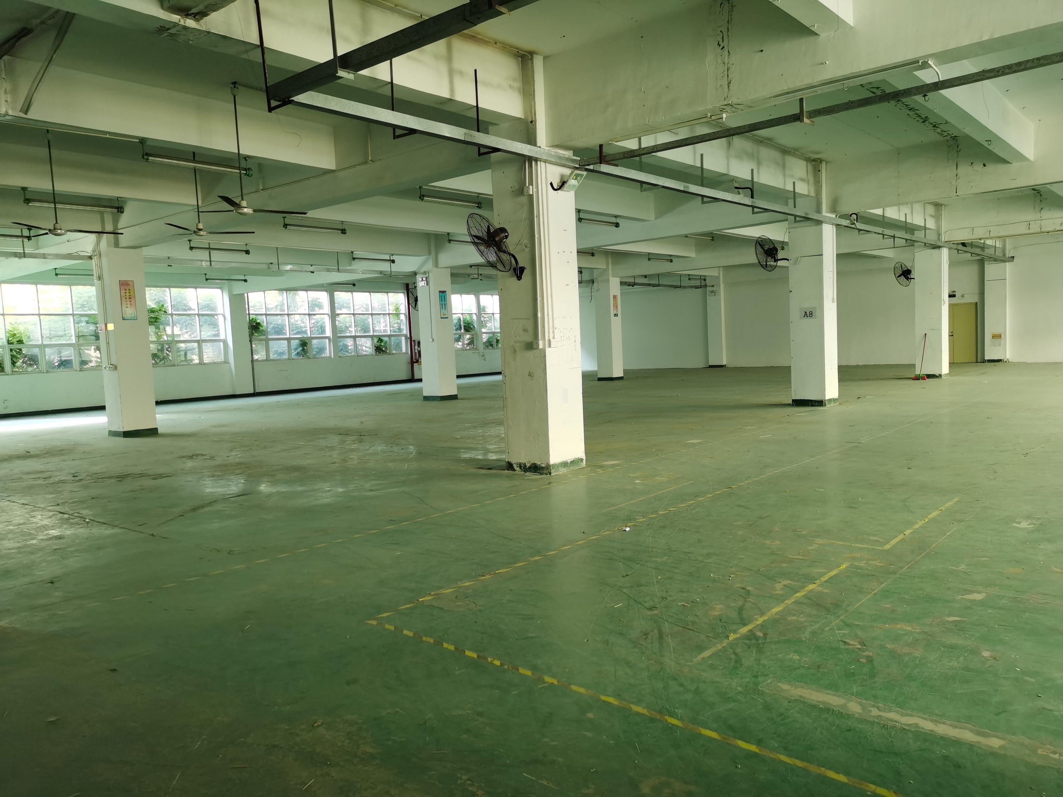 沙井西环路边上900平方精装修厂房招租,带办公室。-图3