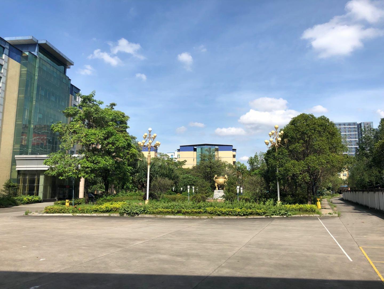 寮步镇花园式厂房共8万平方适合做学校