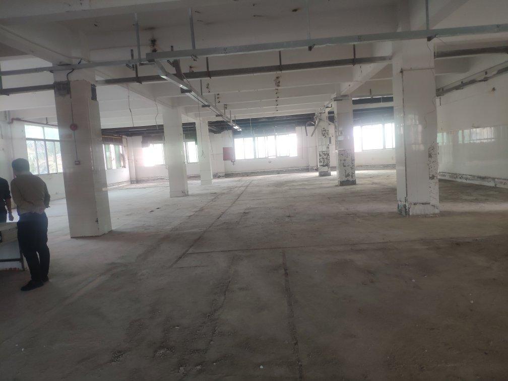 观澜新出楼上1560平原房东无公摊厂房