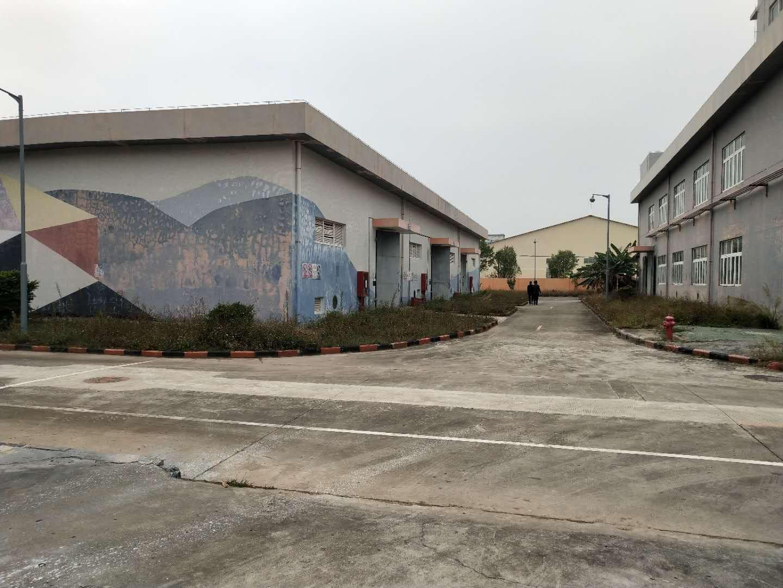 坑梓单层标准仓库900出租,园区空地超大