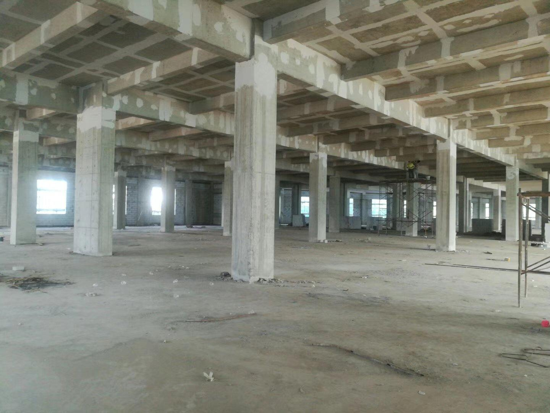 明包,明包。 年底新出标准厂房,52000平方,寻找实力物业