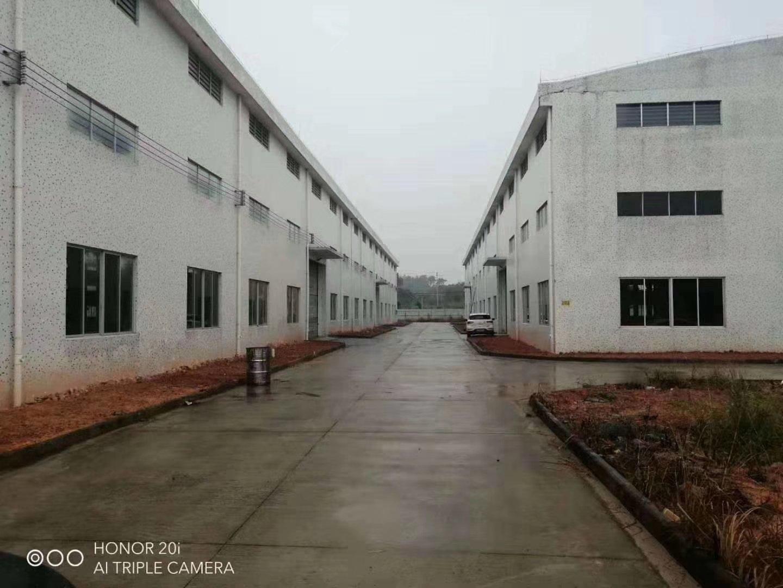 长宁镇建筑9000平方砖墙到顶10米高单一层厂房出售